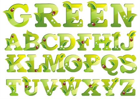 illustration herbe: Lettres avec l'alphabet feuille verte isol�e sur fond blanc
