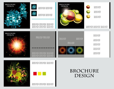 Business Brochure Layout Design Template Vector