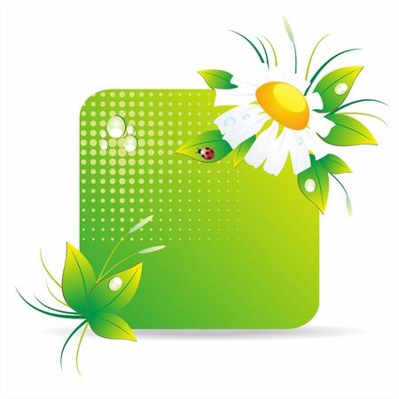 Fresh green leaves for summer banner design Stock Vector - 10134129