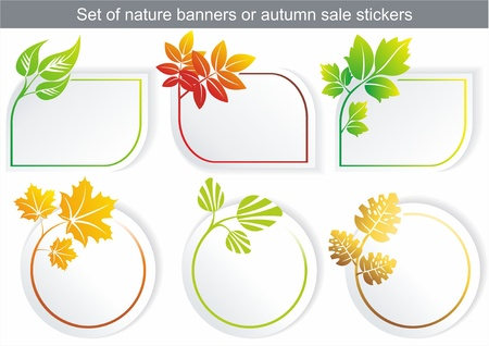 flower shop: Vector natural stickers with different leaf Illustration