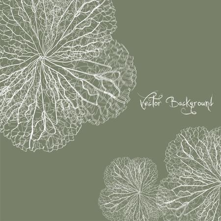 fluff: vector de flores de fondo