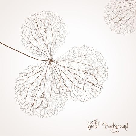 vector bloem achtergrond