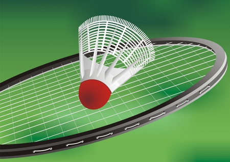 A tennis racket and new tennis ball Vector