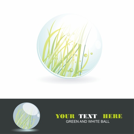 grass blade: Sphere with grass inside, vector shiny ball. Eco symbol.