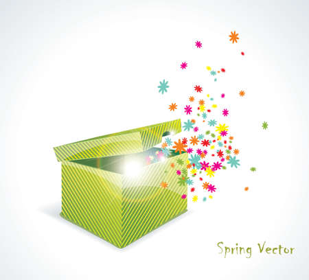 Magic gift box with flowers Vector