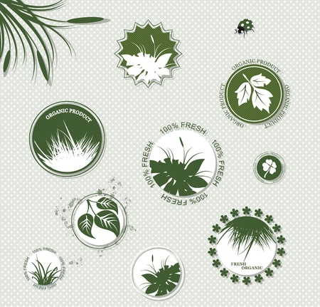 Set of organic and farm fresh food badges and labels  Vector