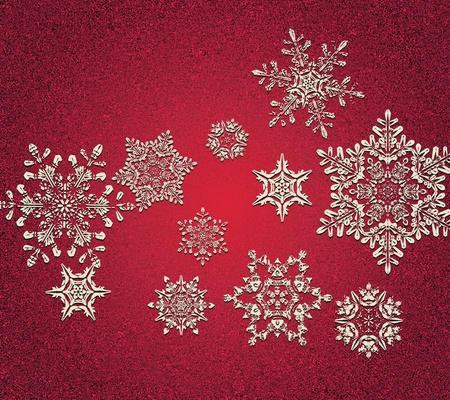 Abstract 3D Snowflakes Design Vector