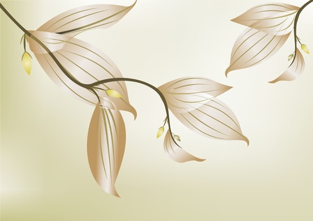 Green branch with leave on white background  Vector