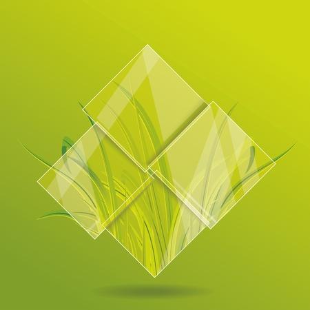 Umwelt-Konzept. Gras hinter dem Glas.