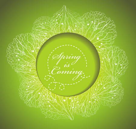 fresh flowers: Fresh spring background with grass and flowers petals