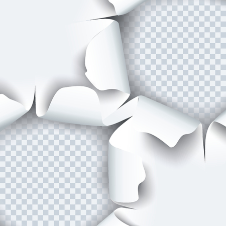 Vector illustration of torn paper with ripped edges and shadow. Graphic concept for your design.