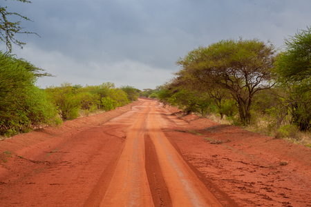 Red soil way through the savannah in Kenya Stock Photo