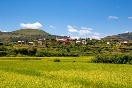 The Landscape shots of green fields and landscapes on the island of Madagascar
