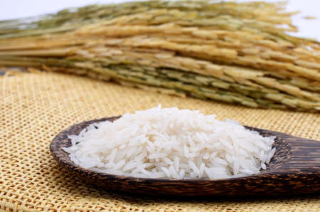 fragrant: Jasmine rice in a spoon and spike
