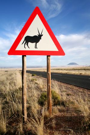 oryx: Oryx Sign Stock Photo