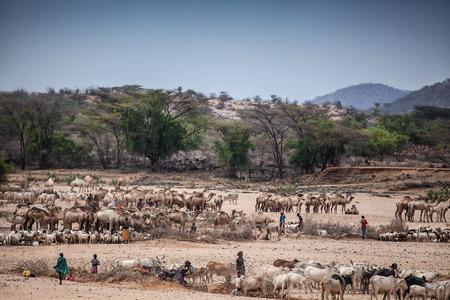 lifeblood: Kenyan River