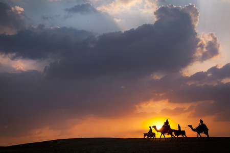 middle of the road: Camel, Donkey train