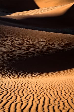 shaddow: sand dune