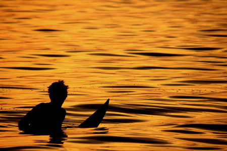 shaddow: Surfer Stock Photo
