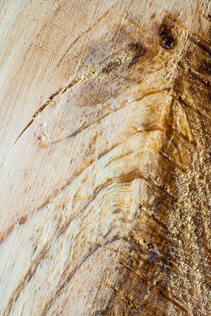 mote: background from natural fibers natural wood Stock Photo