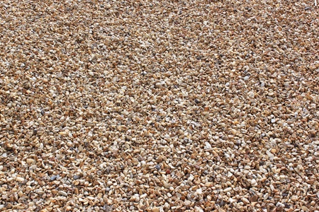 sand pit: gravels of a sand pit on full page