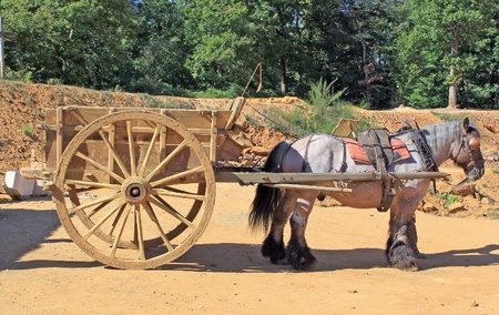 transporting: horse harnessed to a cart for transporting materials Stock Photo