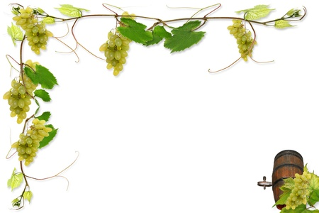 tons: vine leaves and grapes for wine in a fast food Stock Photo
