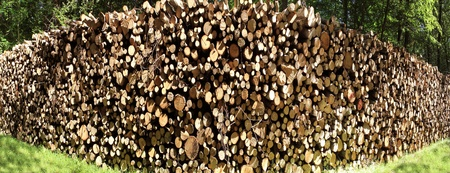 arranged in cords of wood logs for heating photo