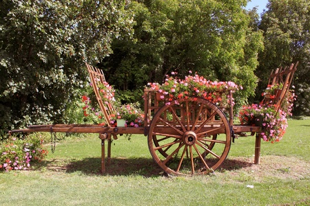 A wooden hay wagon for agriculture photo