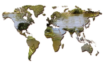 planisphere: l'ecologia e la tutela ambientale in tutto il mondo