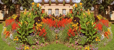 flowered: a garden flowered in panoramic photograph Stock Photo