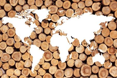 planisphere: un planisfero o una mappa del mondo su legna da ardere per l'energia verde