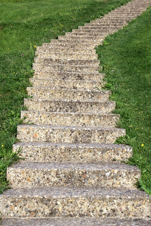 fleeing: a current perspective on grass vertical staircase fleeing up
