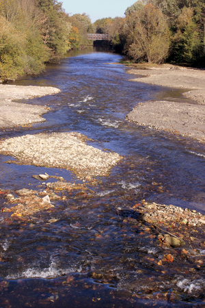 Natural ecological development of the banks of a river, stream or river