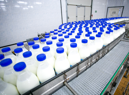 Dairy plant, conveyor with milk  bottles in food factory