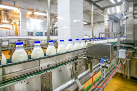 Milk production at factory. White bottles with blue tops going through conveyer line with blurred background