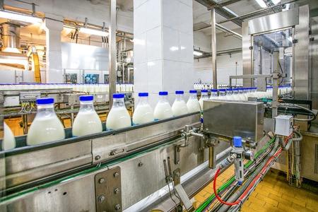 공장에서 우유 생산. 컨베이어 라인을 통과하는 파란색면이있는 흰색 병 스톡 콘텐츠