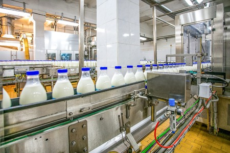 Milk production at factory. White bottles with blue tops going through conveyer line Stockfoto