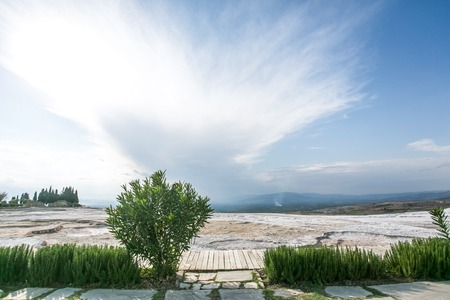 Green and stone landscape with the limestones and bush. Sunny white-blue cloudy sky - Pamukkale