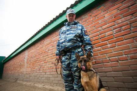 canine: Omsk, Russia - August 22, 2014: Canine Center. German shepherd and policeman friendship Editorial