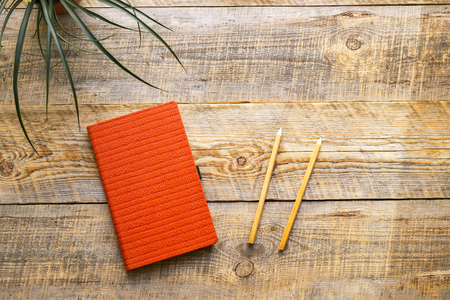 pencil plant: Blank notebook with pencil and plant on wooden table - womans working place Stock Photo