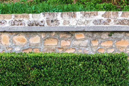 overbuilding: old bright stone wall texture classic facade with green bushes