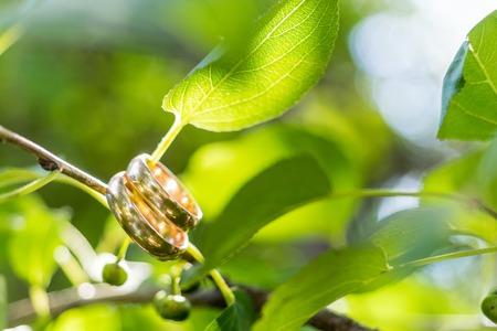 macroshot: Wedding rings macro-shot. Hanging on a twig with green leaves Stock Photo