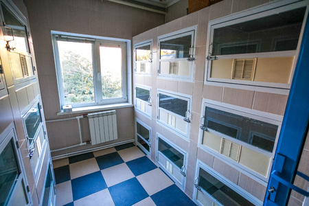 Inside view of animal shelter separated for individual boxes