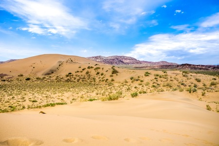 solitariness: sand dune with bushes on a background of mountains under cloudy sky