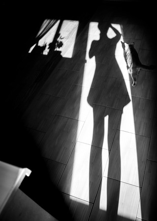 considerate: Cheerful girl with a cat - shadow on house floor in the morning. Black and white photo, monochrome Stock Photo