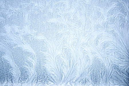 rime frost: rime frost on the window at day