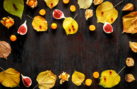 post cards: Autumn background: colorful fallen maple leaves, red berries on wooden surface with space for text - for post cards, design templates, mock ups