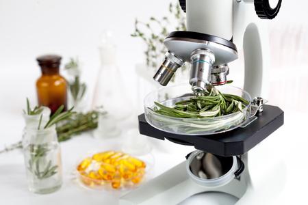 Eten kwaliteitscontrole in het laboratorium rozemarijn niemand