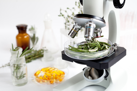 Food quality control in the laboratory rosemary no one Stock Photo - 65032292